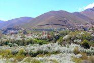 فصل بهار در روستای سولقان